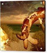 Barbecue On The Beach Acrylic Print