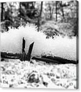 Barbed Wire In Snow Acrylic Print