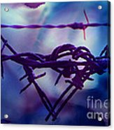 Barbed Wire Love Series The Blues 2 Acrylic Print