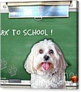 Bark To School Acrylic Print