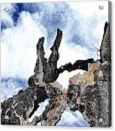 Bark To The Sky Acrylic Print