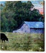 Barn 30 Pastel Acrylic Print
