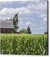 Barn And Corn Acrylic Print