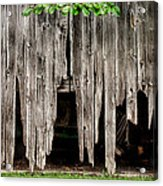 Barn Boards - Rustic Decor Acrylic Print