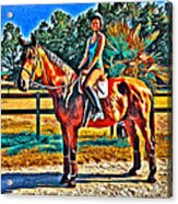 Barn Horse Two Acrylic Print