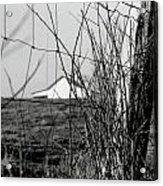 Barn Through Fence Acrylic Print