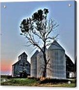 Barn Tree Acrylic Print