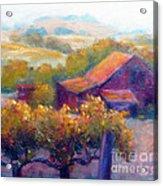 Barn Vineyard Acrylic Print