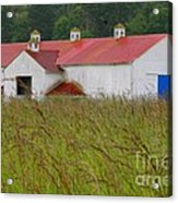 Barn With Blue Door Acrylic Print by Art Block Collections