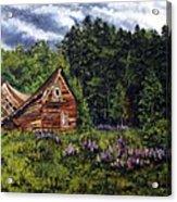 Barn With Purple Flowers Acrylic Print