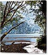 Barnes Creek At Lake Crescent - Washington Acrylic Print