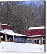 Barns And Horses In Winter Acrylic Print