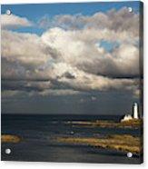 Barns Ness Lighthouse  East Lothian Acrylic Print