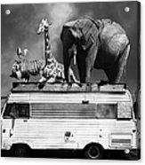 Barnum And Bailey Goes On A Road Trip 5d22705 Vertical Black And White Acrylic Print