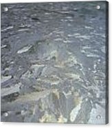 Baroque Ice Acrylic Print by Jaime Neo