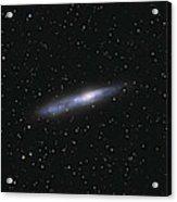 Barred Spiral Galaxy Ngc 55 Acrylic Print