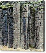 Basalt Columns Acrylic Print