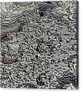 Basalt Topography Acrylic Print