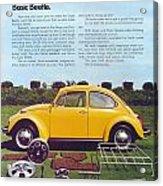 Basic Beetle  Acrylic Print