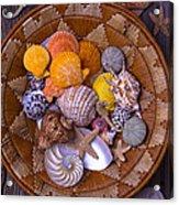 Basket Full Of Seashells Acrylic Print