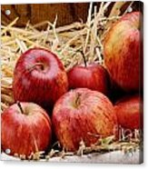 Basket Of Delicious Red Apples Acrylic Print