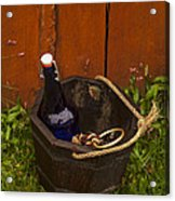 Basket Of Goodies Acrylic Print