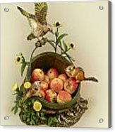 Basket Of Peaches And Flicker Acrylic Print by Mary Mcgrath