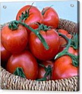 Basket Of Tomatoes  Acrylic Print