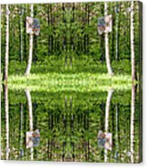 Basketball Forest Court Reflection 1 Acrylic Print