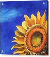 Basking In The Sun Acrylic Print