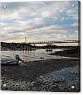 Bass Harbor At Low Tide Acrylic Print