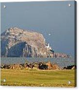 Bass Rock Scotland Acrylic Print