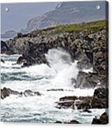 Battered Coast Acrylic Print by Tony Reddington