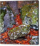 Battlefield In Fall Colors Acrylic Print
