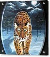 Batukhan Snow Leopard Acrylic Print