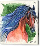Bay Arabian Horse With Blue Mane 30 10 2013 Acrylic Print