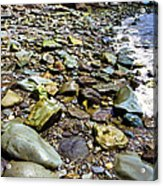 Bay Of Fundy Shoreline Acrylic Print