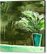 Bay Window Plant Acrylic Print