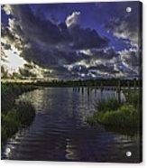Bayou Beauty Acrylic Print