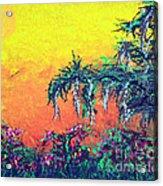 Bayou Honeymoon Acrylic Print