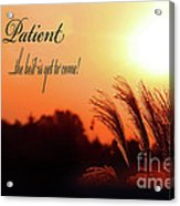 Be Patient Acrylic Print by Cathy  Beharriell