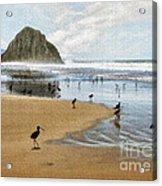 Beach Birds Impasto Acrylic Print