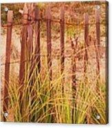 Beach Dune Fence At Cape May Nj Acrylic Print