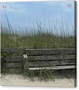 Beach Grass And Bench  Acrylic Print by Cathy Lindsey