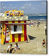 Beach Hut Acrylic Print by David Davies