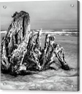 Beach Monster 2 - Outer Banks Bw Acrylic Print