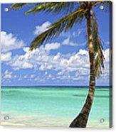 Beach Of A Tropical Island Acrylic Print
