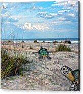 Beach Pals Acrylic Print by Betsy Knapp