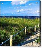 Beach Path Acrylic Print