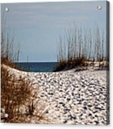 Beach Path Acrylic Print